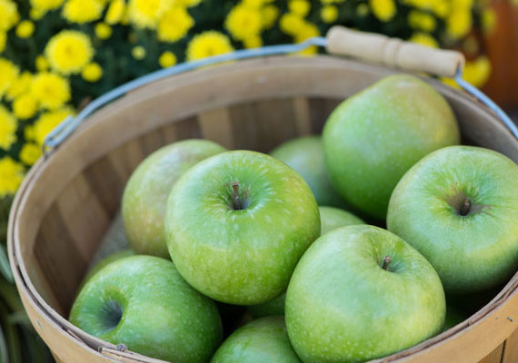 Orchard Fresh Granny Smith Apples in Box THUMBNAIL