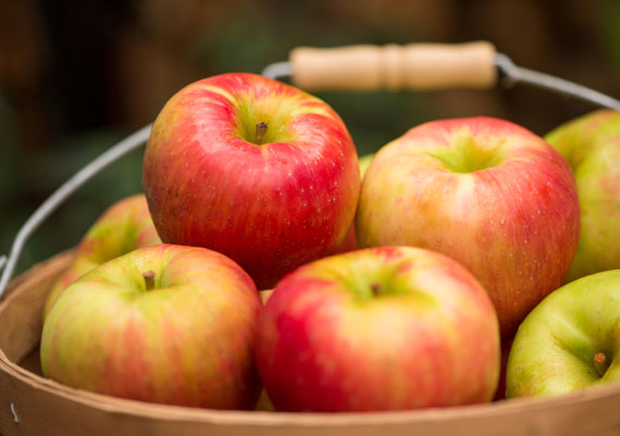 Orchard Fresh Honey Crisp Apples in Box