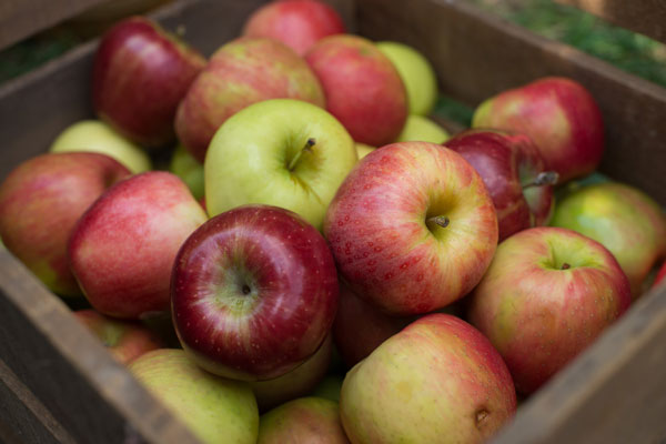 Mixed Variety Apples