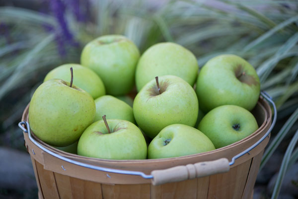 4 Month Subscription - 36 to 44 apples per box SWATCH