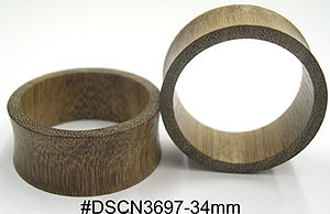 w34mm DSCN3697 Wood Ear Tunnel Pair MAIN