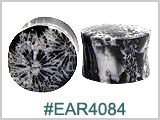 EAR4084, Black Coral Ear Plugs