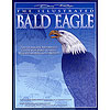 KBIR1221, The Illustrated Bald Eagle