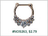 #NOS263 16G 3/16 Petite Septum Nose Clickers THUMBNAIL