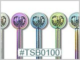 TSB0100 TSB0400 Titanium Colored Barbells THUMBNAIL
