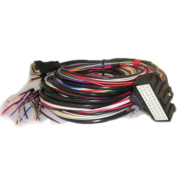 MoTec M4 Unterminated Trim to Length Wire Harness