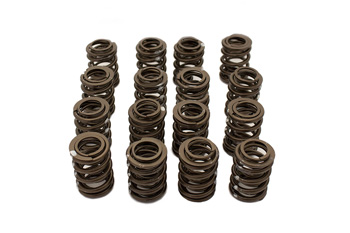 VAC High Performance Valve Spring Set (BMW S14)