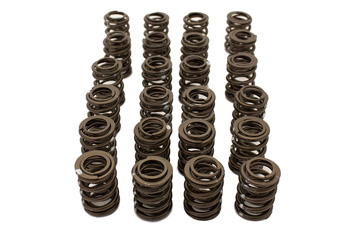 VAC High Performance Valve Spring Set (24 pcs) BMW S38_MAIN