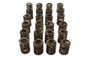 VAC High Performance Valve Spring Set (24 pcs) BMW S38 Mini-Thumbnail