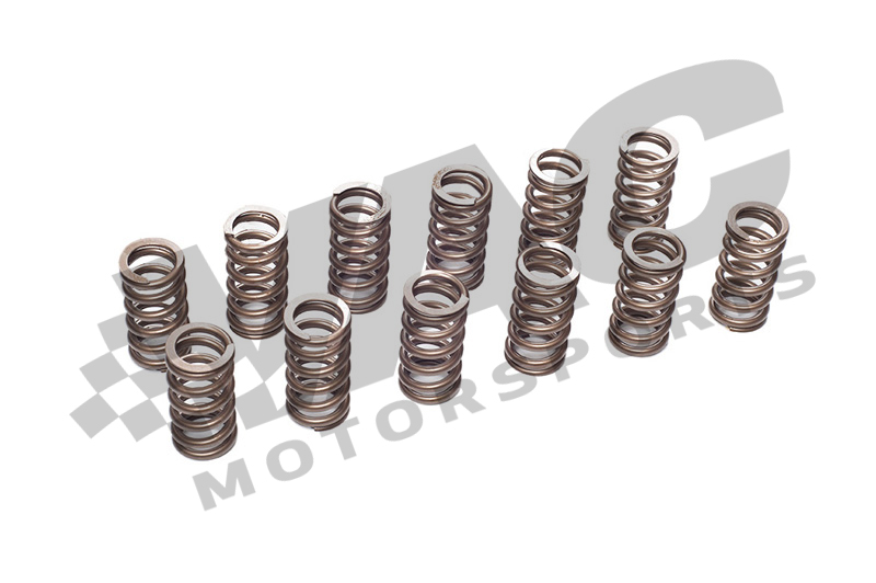 VAC Performance Valve Spring Set (BMW M20) MAIN