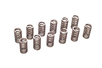 VAC Performance Valve Spring Set (BMW M20)_MAIN