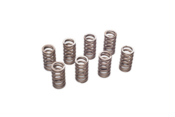 VAC Performance Valve Spring Set (8 pcs) BMW M10