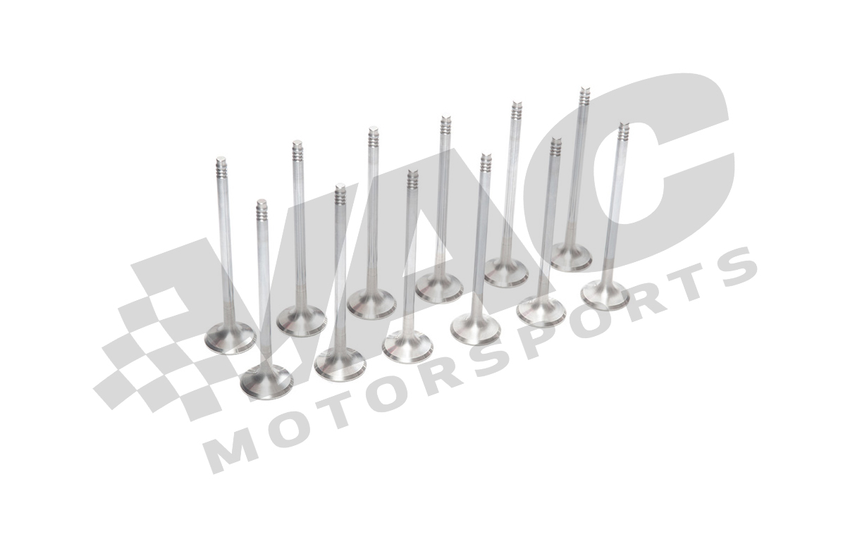 VAC Performance Valve Kit, 8mm Stem (BMW M30) THUMBNAIL