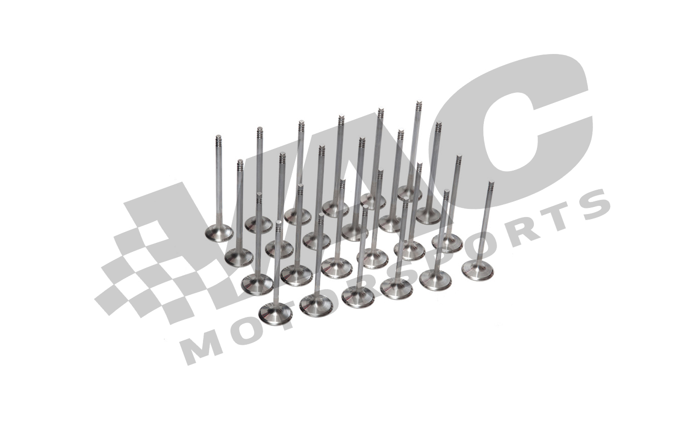 VAC Performance Valve Kit (BMW M50/M52/S50us/S52us) THUMBNAIL