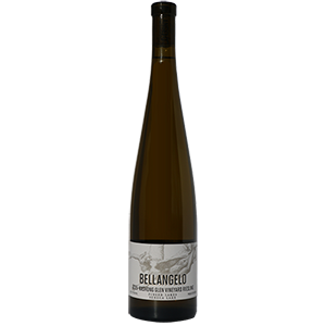2015 Kashong Glen Vineyard Riesling MAIN