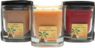 Coconut Wax Blend Holiday Candles by Aloha Bay