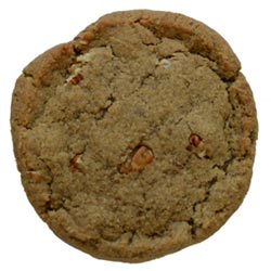 Michigan Maple Pecan Cookie by Bit Baking Company THUMBNAIL