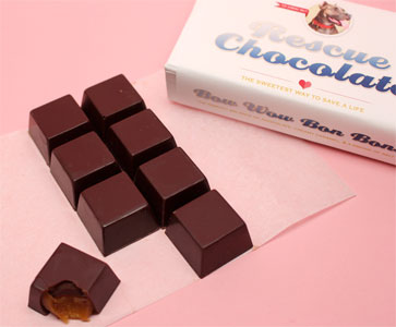 Bow Wow Bon Bons Salted Caramel Truffles by Rescue Chocolate