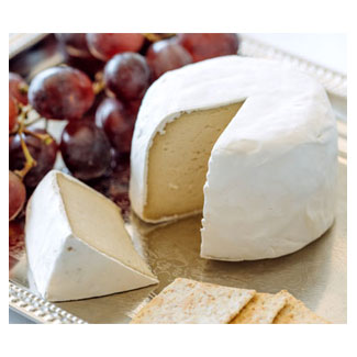 Botanic Camembert Cultured Artisan Cheese by The Frauxmagerie MAIN