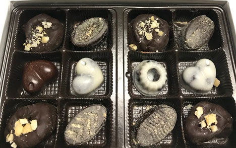Cocoture Chocolates Winter Assortment by ZippyCook