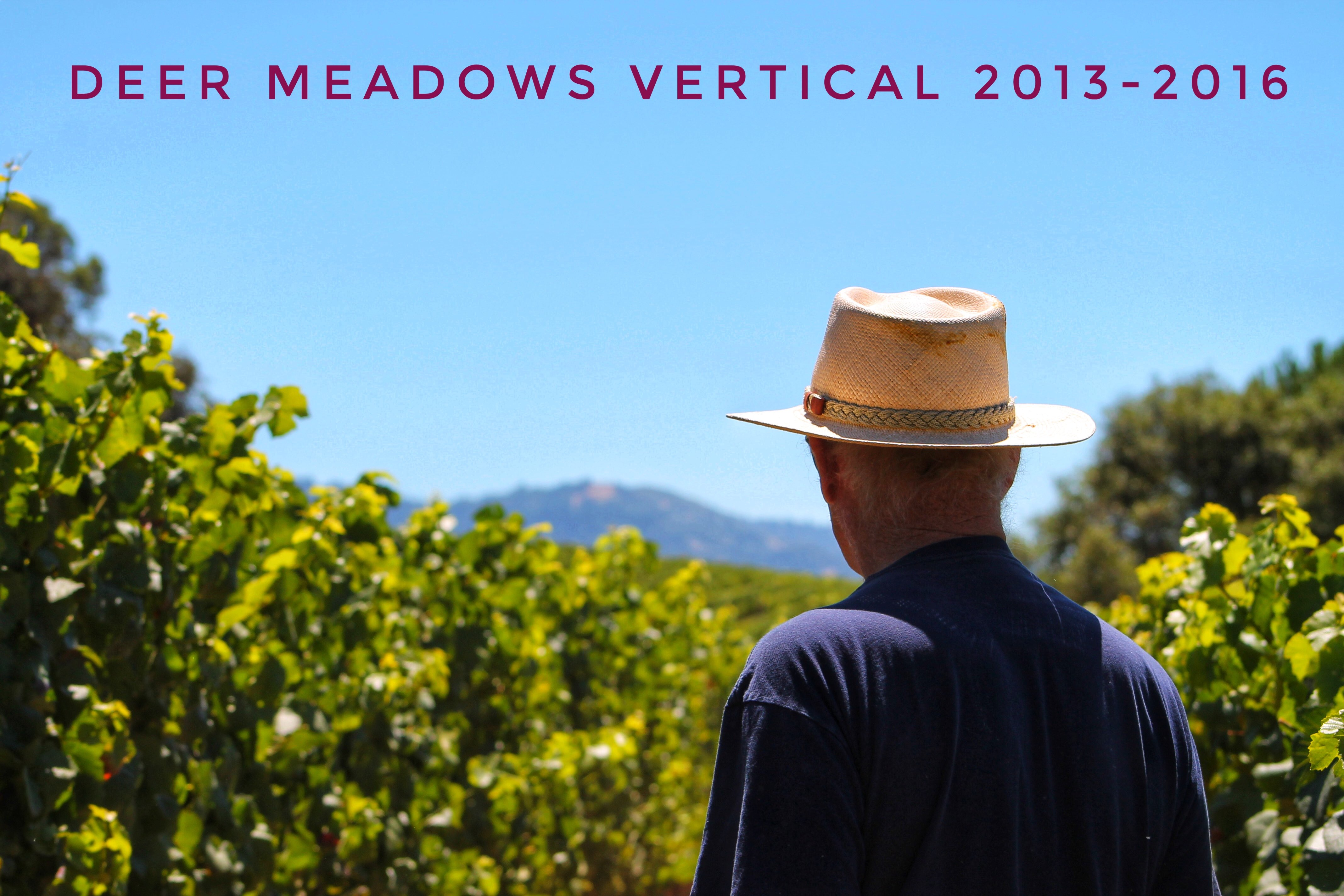 Deer Meadows Vertical 2013-2016 THUMBNAIL