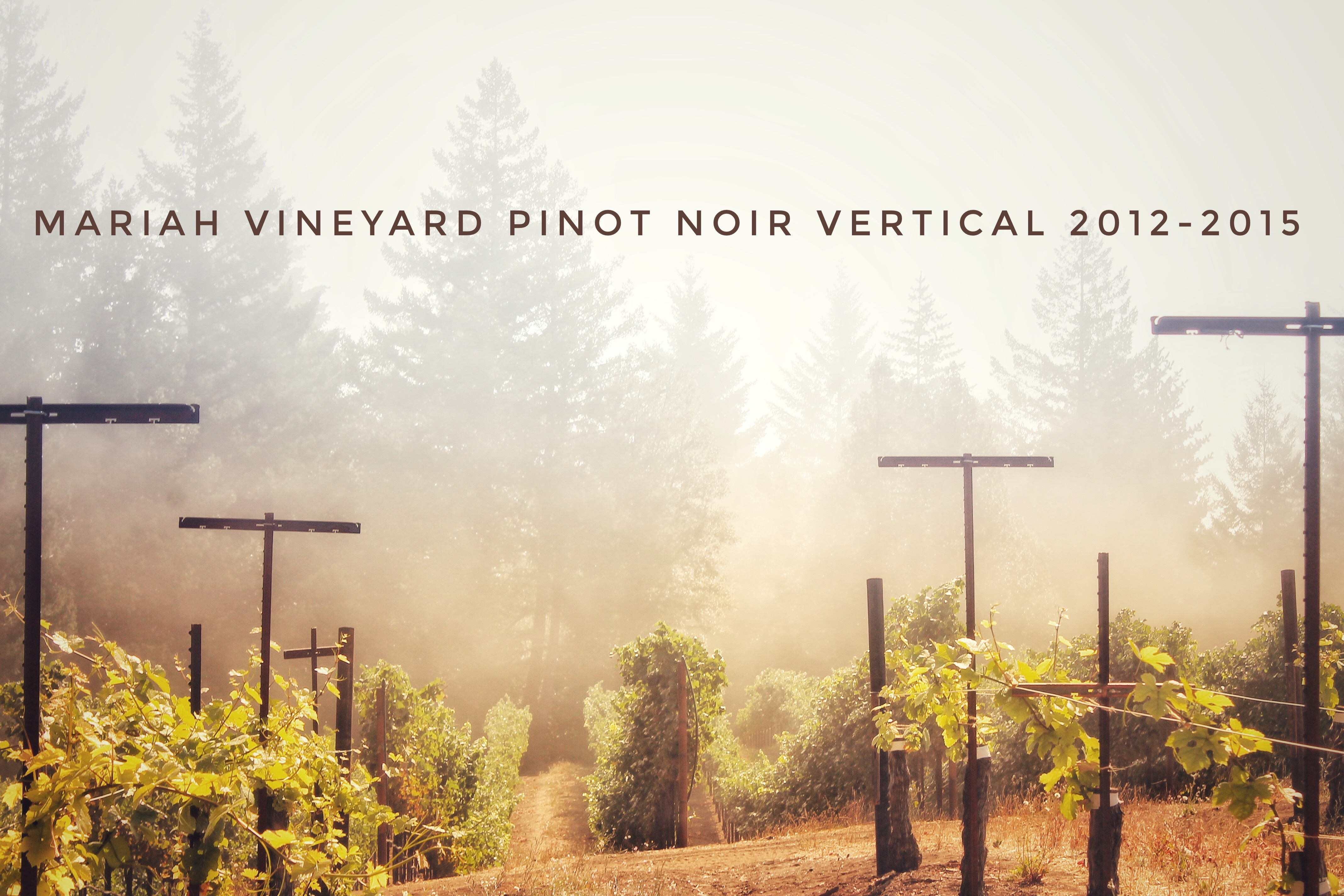 Mariah Vineyard Vertical 2012-2015
