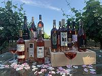 2020 Rosé All Day Mixed Case THUMBNAIL