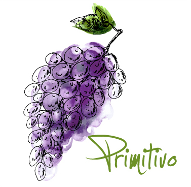 Get to Know Primitivo Mixed Case MAIN